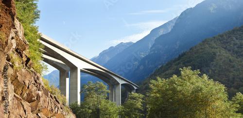 Most drogowy w lasach Swiss