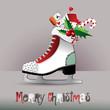 Merry Christmas  figure skates