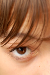 caucasian boy's beautiful brown eye closeup macro