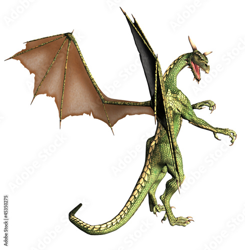 Fotobehang Draken Green Fantasy Dragon