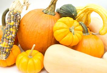 Pumpkins, corn and gourds