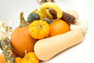 Pumpkins, corn and gourds