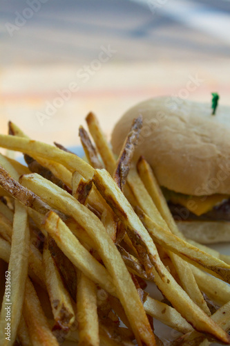 French Fries and a Cheeseburger