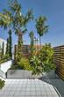 piante sul terrazzo moderno