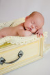 Newborn Baby Girl Sleeping in Yellow Drawer
