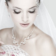 Portrait of beautiful bride. Wedding dress. Wedding decoration
