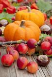 Fototapety Herbstdeko