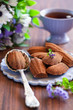 Chocolate madeleine cookies, selective focus