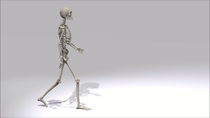 Gehendes Skelett