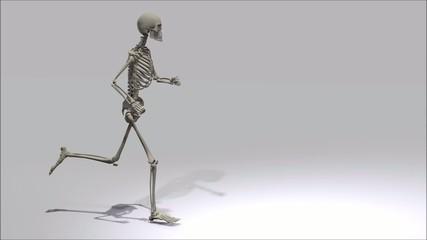 Laufendes Skelett