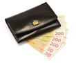 Black wallet and Euro banknotes isolated on white