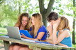 Group of young student using laptop outdoor,Italy