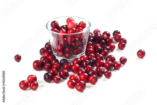 Fresh cranberries Isolated on white