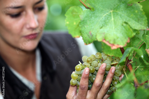 Woman stood by grape vine