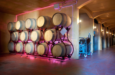 Wine barrel rack (Italy, Franciacorta)