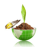 green leaf growing on dirt inside globe with butterfly