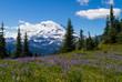 Leinwanddruck Bild - Mount Rainier