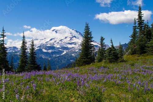 Leinwanddruck Bild Mount Rainier