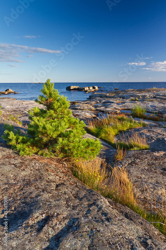 Rocky Baltic Sea coastline in Sweden