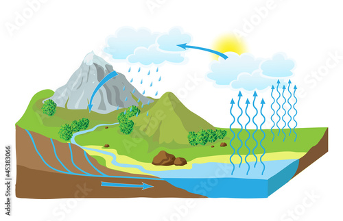 poster of Vector schematic representation of the water cycle in nature