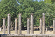 Columns in rows