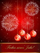 Frohes neues Jahr 2013