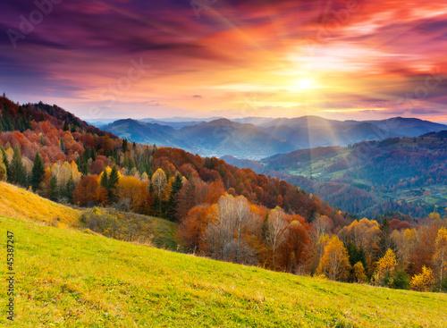 autumn 45387247