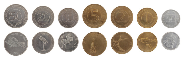 Old Slovenian Coins Isolated on White