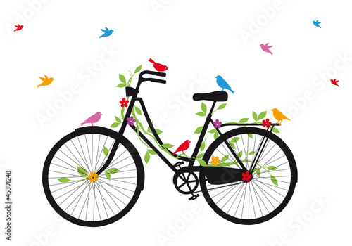 old bicycle with birds, vector © beaubelle