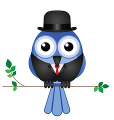 Comical bird businessman sat on a branch