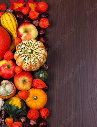 Thanksgiving border