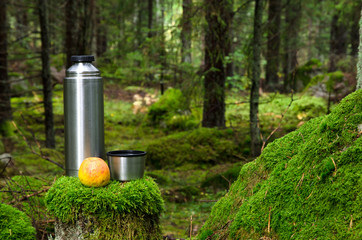 Thermos and apple in deep forest