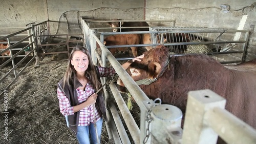 Upper view of woman in barn petting bull