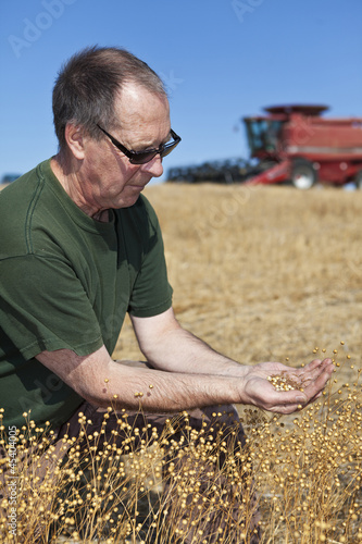 farmer holding flax seeds