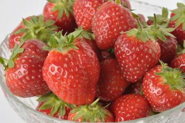 fraises Cijosée