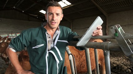 Farmer in barn with electronic tablet
