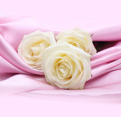 rose on pink silk background