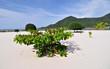 Fototapeten,landschaft,stranden,insel,wasser