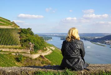 Weinberge am Rhein - Panorama Blick