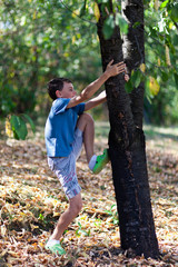 Happy child climbing in a tree