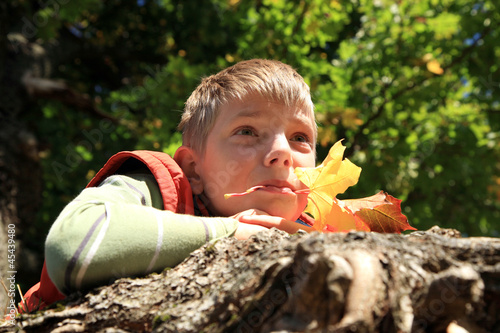 Boy with leaves - autumn