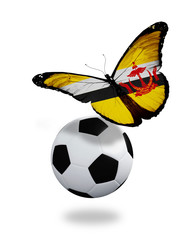 Concept - butterfly with Brunei flag flying near the ball, like
