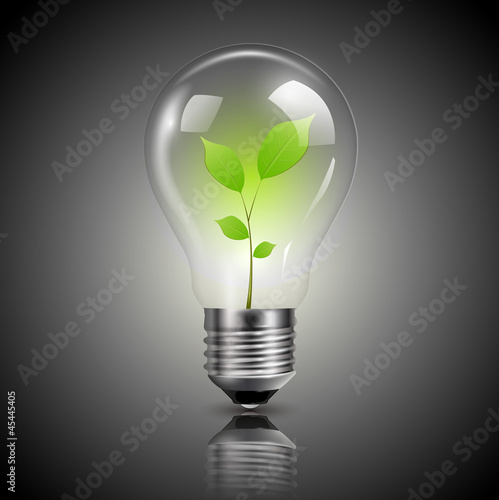 Light bulb with green sprout inside, vector.