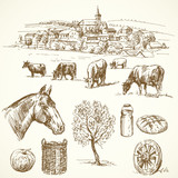 farm animal, rural village - hand drawn collection
