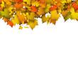 Herbst, Herbstblätter, Blätter, Hintergrund, Vorlage, Postkarte