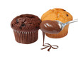 chocholate muffins