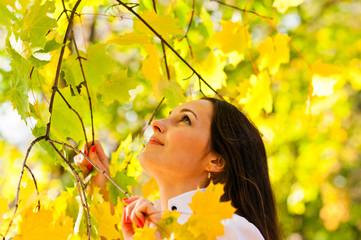 woman holding on to autumn bush