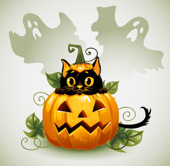 Black cat in a Halloween pumpkin and ghost.