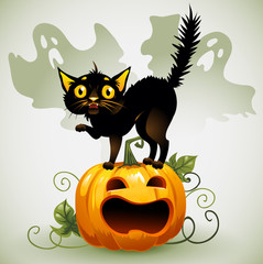 Scared black cat on a pumpkin  and ghost.