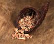trockenfutter im füllhorn